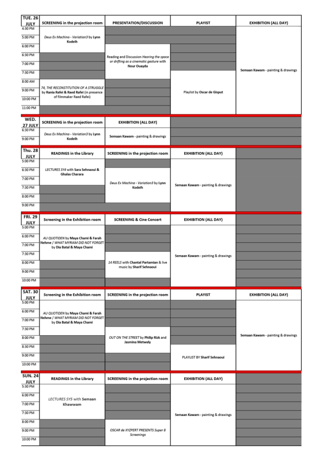SYNAPSE0-timeline2ndweek